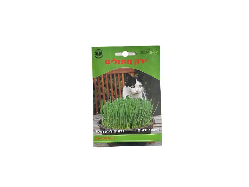 קטניפ - נפית דשא חתולים עשב לעיכול של חתולים