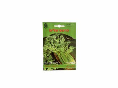 זרעי עלי כרפס סלרי לגידול ביתי
