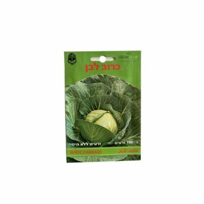 זרעי כרוב לבן לגידול בבית ובחצר