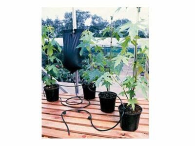 השקיה לעציצים בבית ובחוץ בלי חשמל