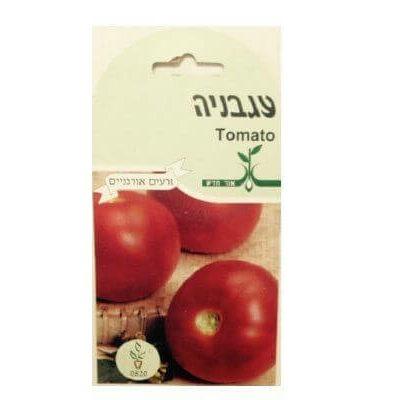 זרעי עגבניה אורני