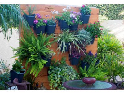 garden living wall irrigation