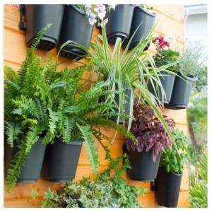 קיר ירוק כולל מערכת השקיה וניקוז