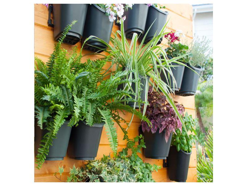 קיר ירוק דקורטיבי עם צמחים חיים עיצוב פנים