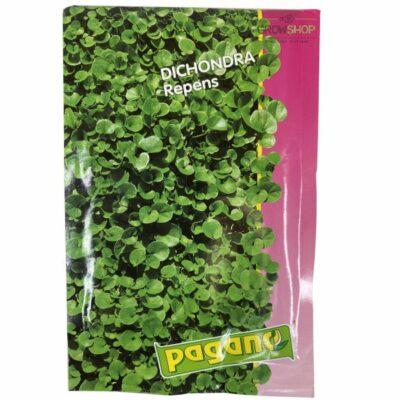 זרעי דיכונדרה 50 גרם פאגאנו